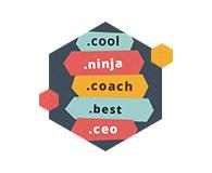 Získajte najštýlovejšie domény .ninja, .ceo, .cool a ďalšie