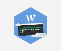 WP-CLI dostupné na hostingoch